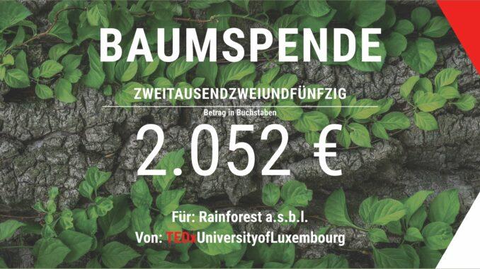 Spendenscheck_TEDx_rainforest